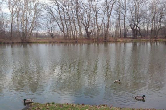 Widok na wodę, obok jest taki znak dokąd sięgała Wisła w różnych latach, ogólnie wszystko było pod wodą