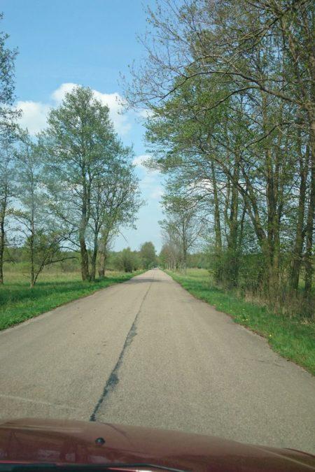 W drodze do puszczy :)