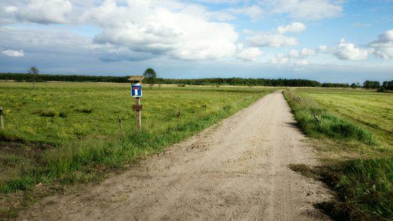 Dosłownie kawałek na wiejską drogą zaczyna się Park Krajobrazowy, niestety stąd nie ma ścieżek dalej.
