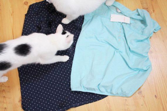 """Śliczna bluzka z kokardą i koszulka w kolorze morskim. Koty są moje i nie lubię, jak włażą mi w kadr, po prostu one to robią non stop, więć uznałam, że pokażę Wam """"prawdę o nich"""" hahah :)"""
