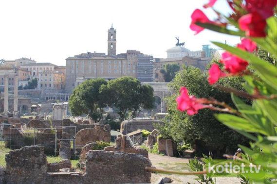 Rzym widok na Forum Romanum od strony Palatino