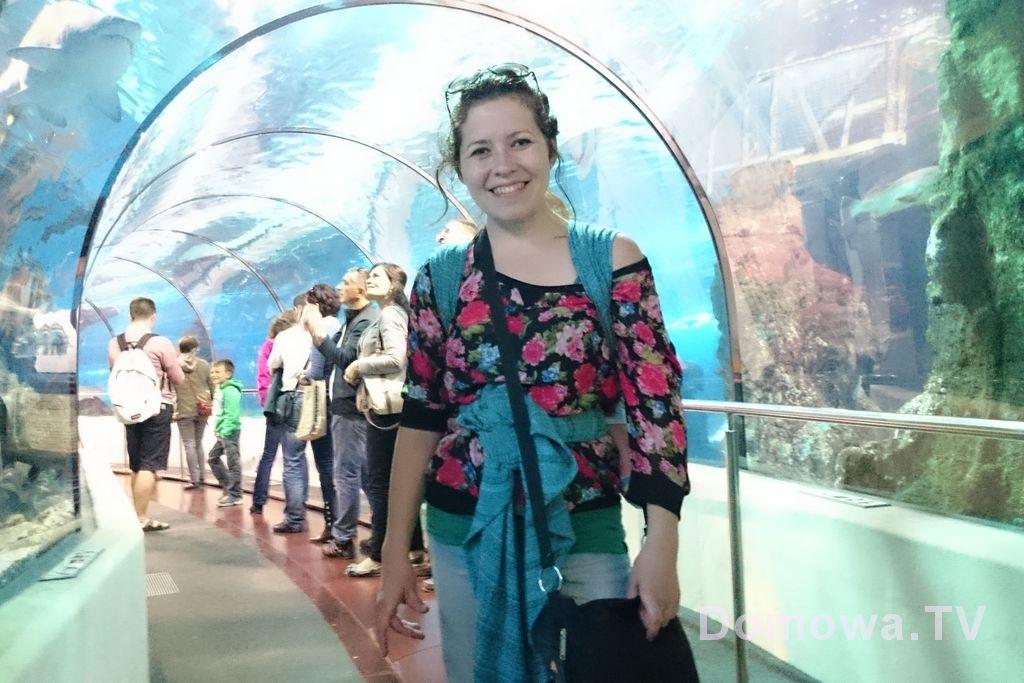 Barcelona :) Fantastyczne oceanarium