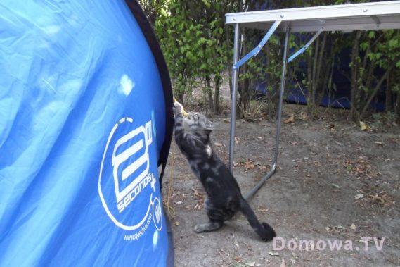 Nasz namiot :) i gość