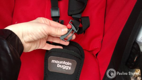 Pasy w Mountain Buggy Duet