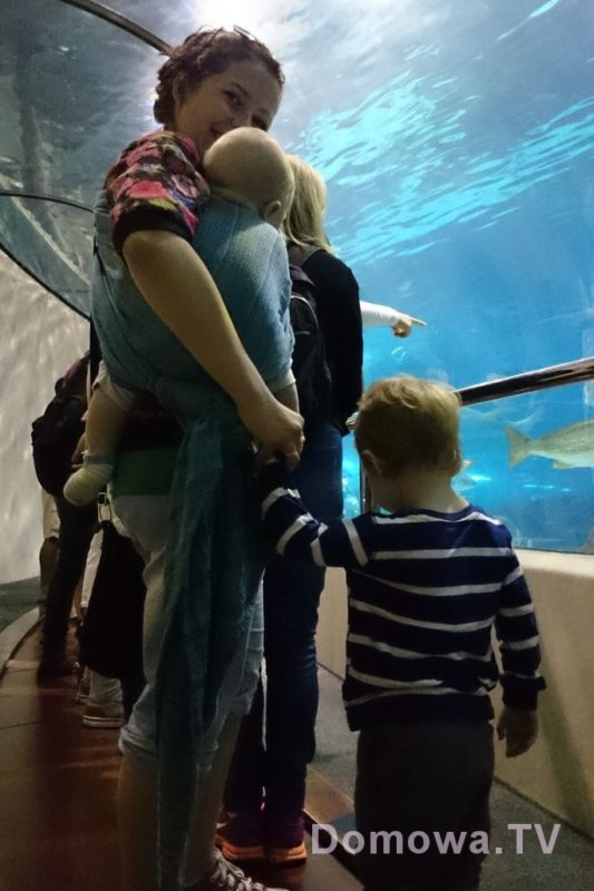 W oceanarium