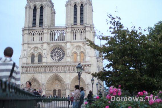 Paryż i spacer w deszczu. Notre Dame