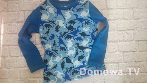 Bluzeczka w dinozaury