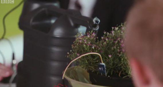 Automatyczne podlewanie kwiatków z użyciem micro:bit :)