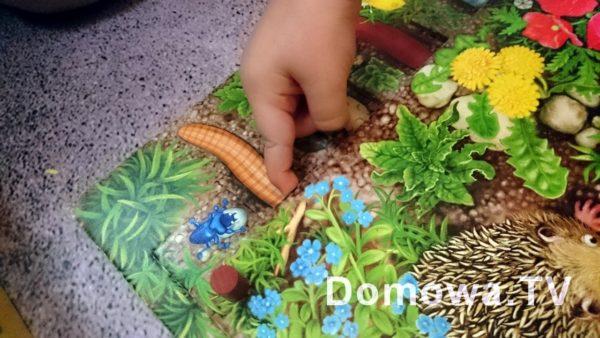 Jedna z fajniejszych gier planszowych, z kostką: robaczki