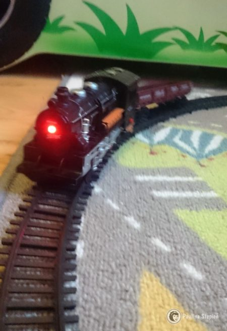 W drugim wagonie co jakiś czas jeżdżą zwierzaki, pociąg na zakrętach je dość często wyrzuca i okazuje się to świetną zabawa :)