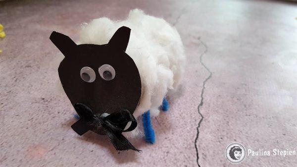 Owieczka z rolki