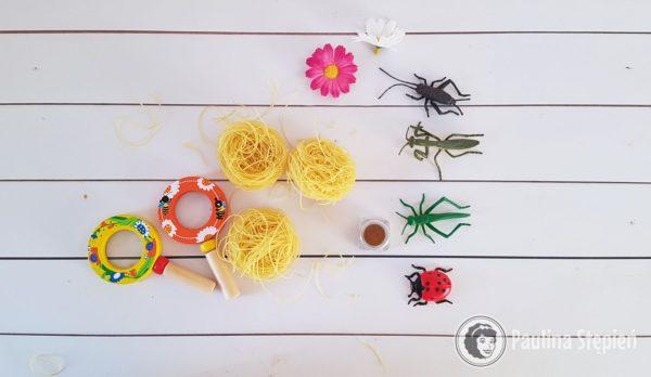 Przygotowanie zabawy z robakami