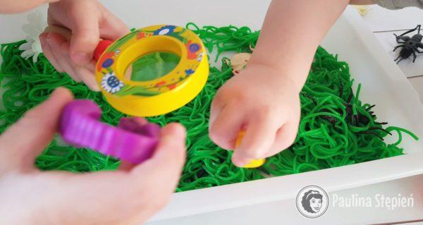 Zabawa dla dzieci, poszukiwanie robaków