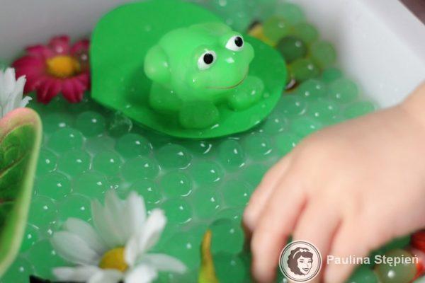 i żabami