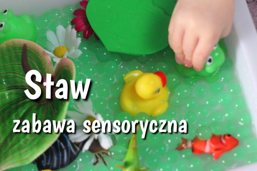 Zabawa sensoryczna staw