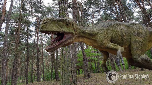 I jeszcze trochę dinozaurów