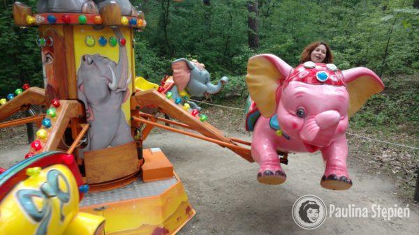 Szalona karuzela typu różowy słoń :D hahaha