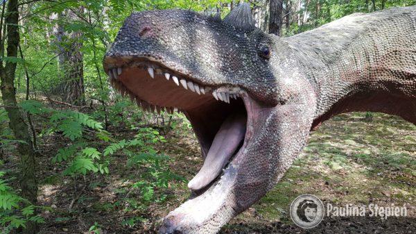 Dinozaury mniej przyjemne :)