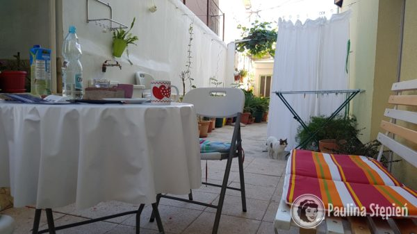 Mieszkanie w Trogirze