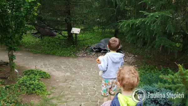 Park idealny dla dzieciaków