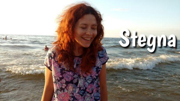 Stegna – bliskie morze