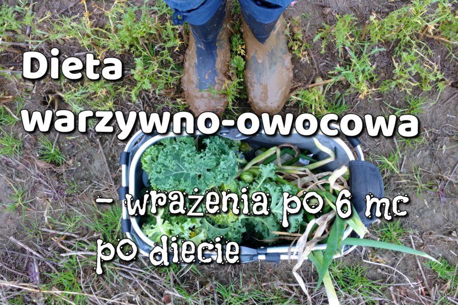 Dieta warzywno-owocowa wrażenia, przemyslenia, podsumowanie