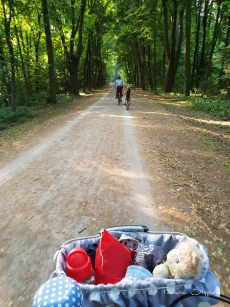 Trasa przez las