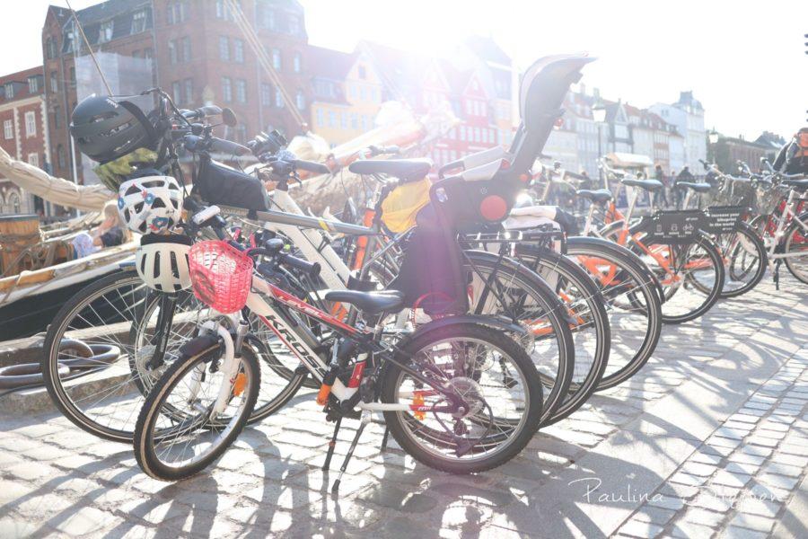 Nasze rowery