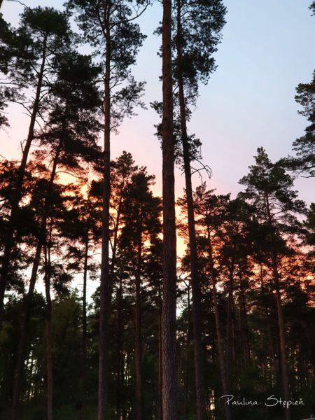 Piękny zachód słońca