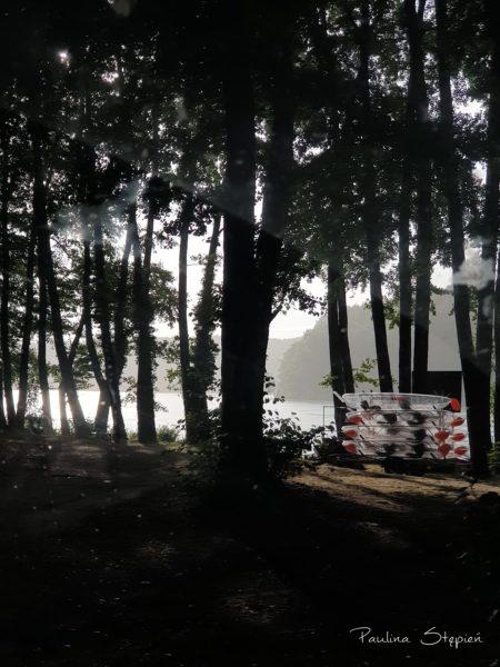 Mgła zaraz po deszczu